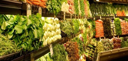 vegetarian-diet1-561x400